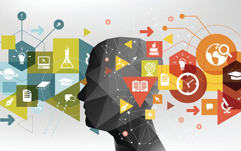 agencia marketing digital alicante kamene projects consultoría empresarial conocimientos