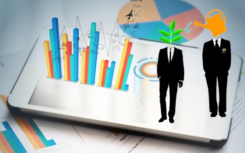 agencia marketing digital alicante kamene projects consultoría empresarial consulting cuidado